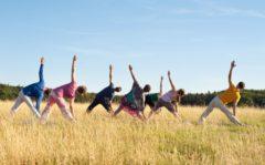 Yoga am Morgen in Weimar auf der Kirschplantage beim Schloss Belvedere