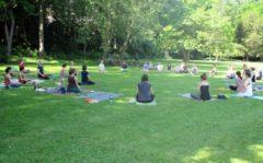 Outdoor Yoga im Park in Weimar Steffen Katz im Juni 2014
