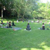 Yoga outdoor im Park auf der grünen Wiese